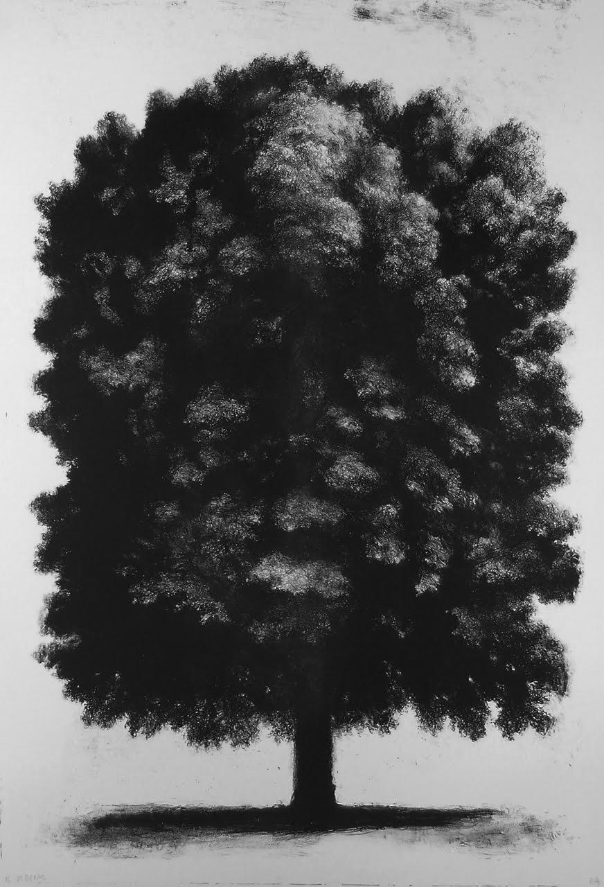 Grand arbre (2008)